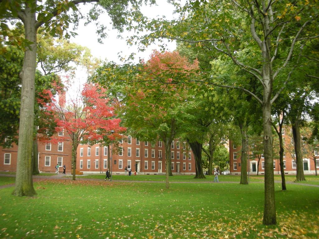 Harvard_Yard,_Dudesleeper_(1)