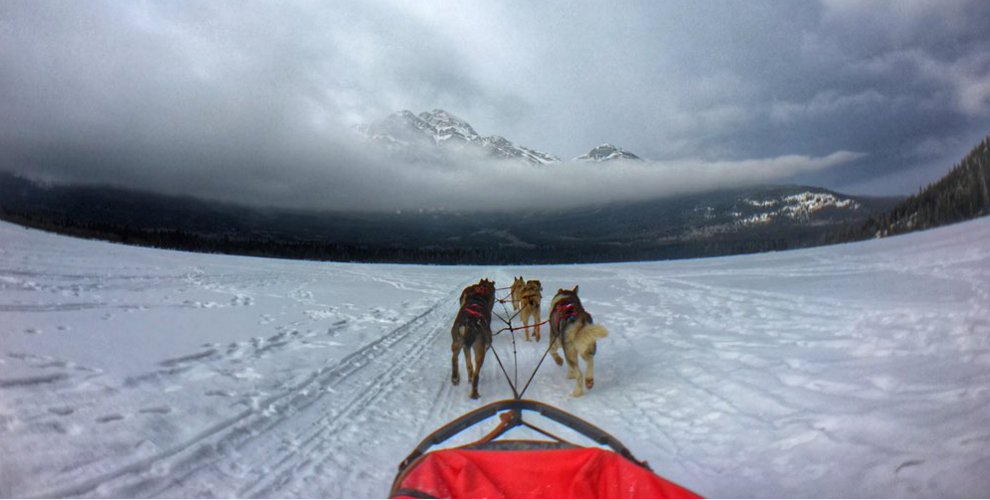 Pack your bags! Jasper in January is full of adventures that won't break the bank!
