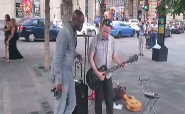 Seal spotted busking in Montreal and it's awesome!