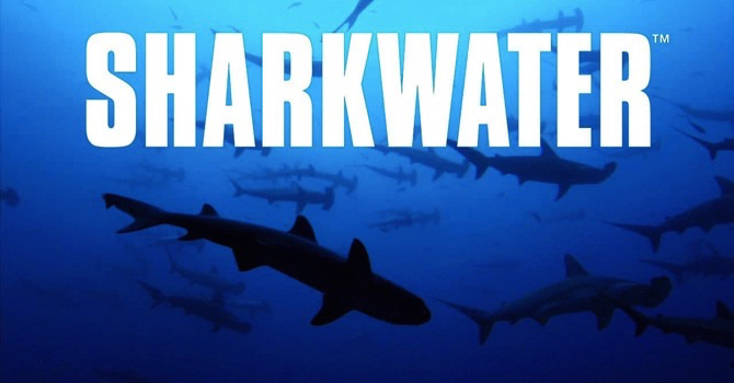 Rob Stewart's Sharkwater returning to theatres for free screenings